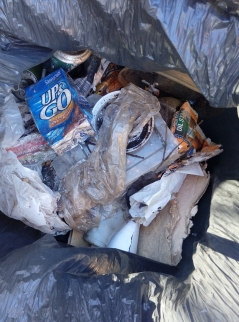 river rubbish1