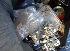 river rubbish2